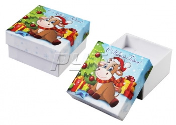 90030/Н Case cardboard without tape,  series Winter collection 60x60