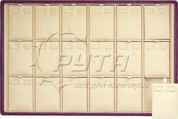 411129 Display tray for 18 pairs of earrings / Removable inserts / 2 horizontal clips